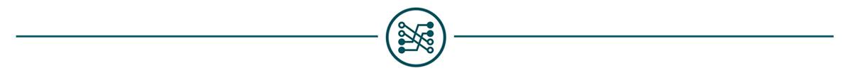 ICON Valuation Model